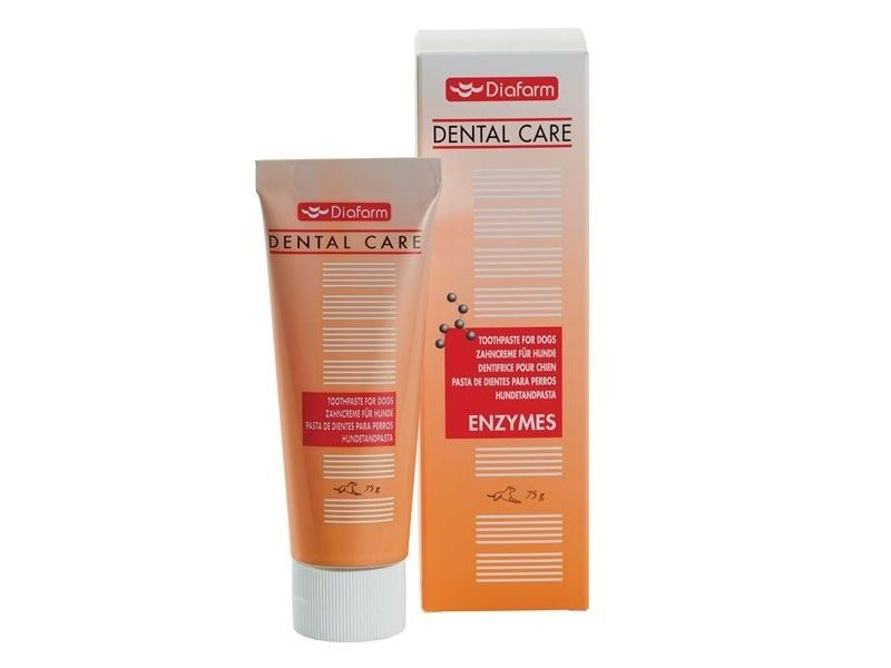 DF TOOTHPASTE FOR DOGS 75G